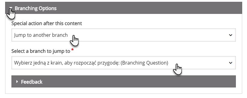 zakładka Branching Options z dwiema opcjami do wyboru