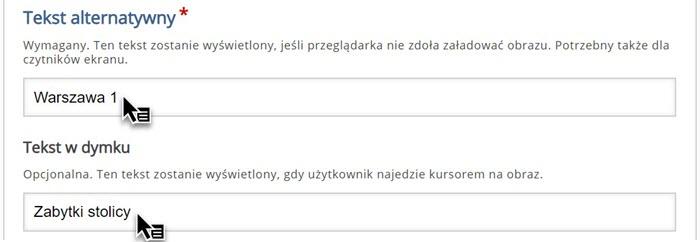 edytor dodawania tekstów alternatywnych z wpisanymi treściami Warszawa 1 i Zabytki stolicy