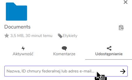 wskazanie pola do wpisywania adresu e-mail osoby, której ma zostać udostępniony plik w ramach w ramach usługi Dysk